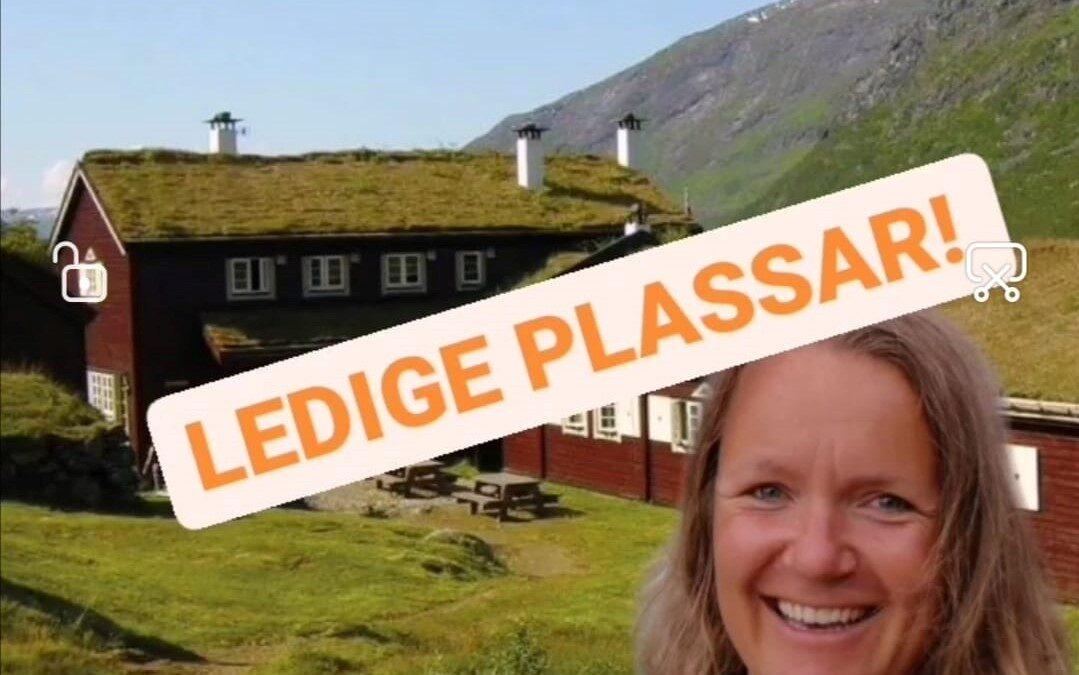 LEDIGE PLASSAR! Bli med Årdal bibliotek på litterær vandring i Jotunheimen